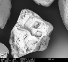 Sand Grain from Scarborough, ME