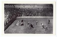 Hockey contest at Appleton