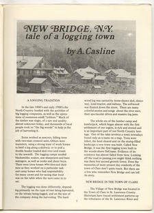 New Bridge, NY:  Tale of a Logging Town