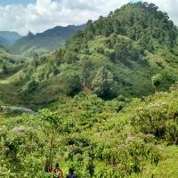 Rural Homestay Environment Tetu West Spring 2016